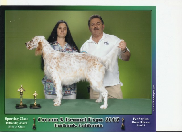 Dallas Groom Expo Dog